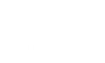 Chrysella-logo-rev