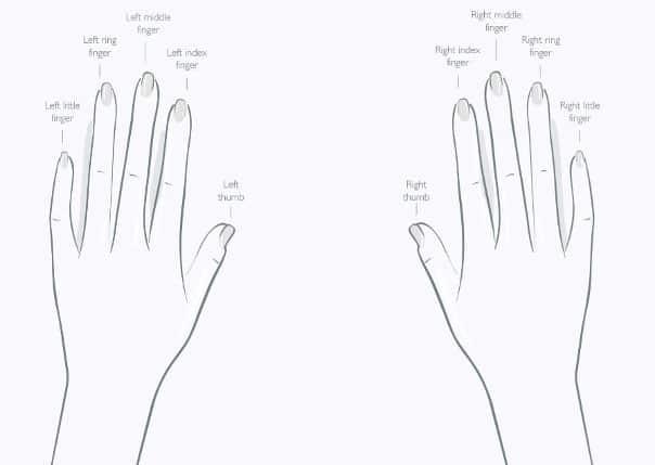 Ring Size Illustration
